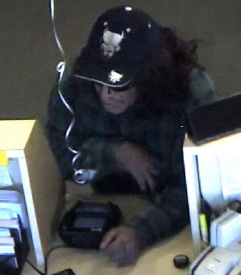 Bank robbery suspect_95812