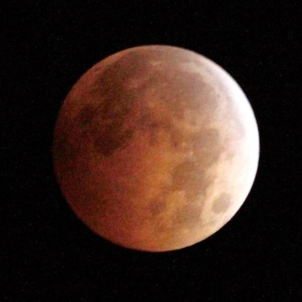 Lunar Eclipse_118412