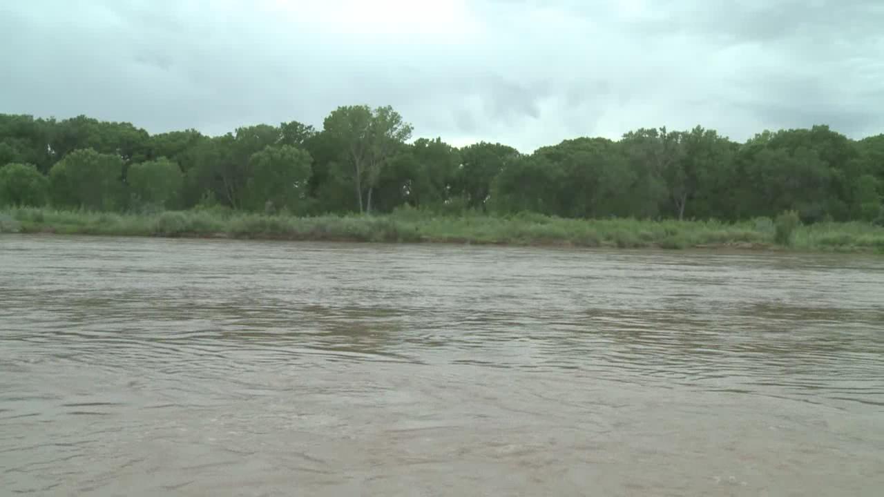 legacy water rio grande bosque_177348
