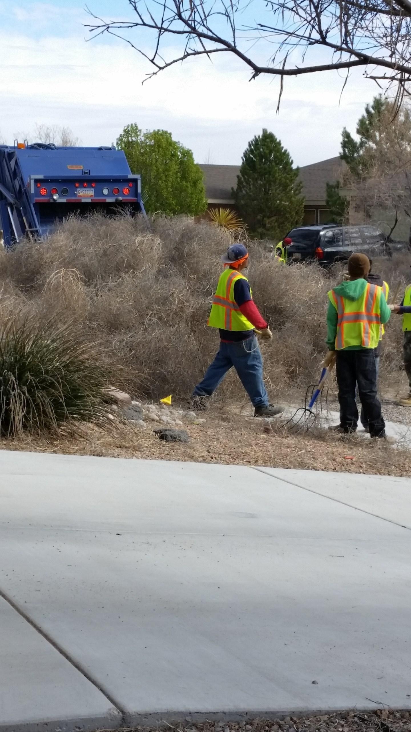 tumbleweed clean up_339702