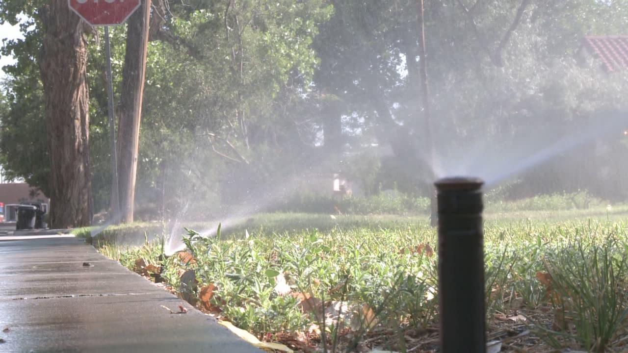 sprinklers_335373