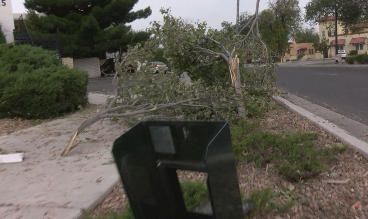 driving-damage_442799