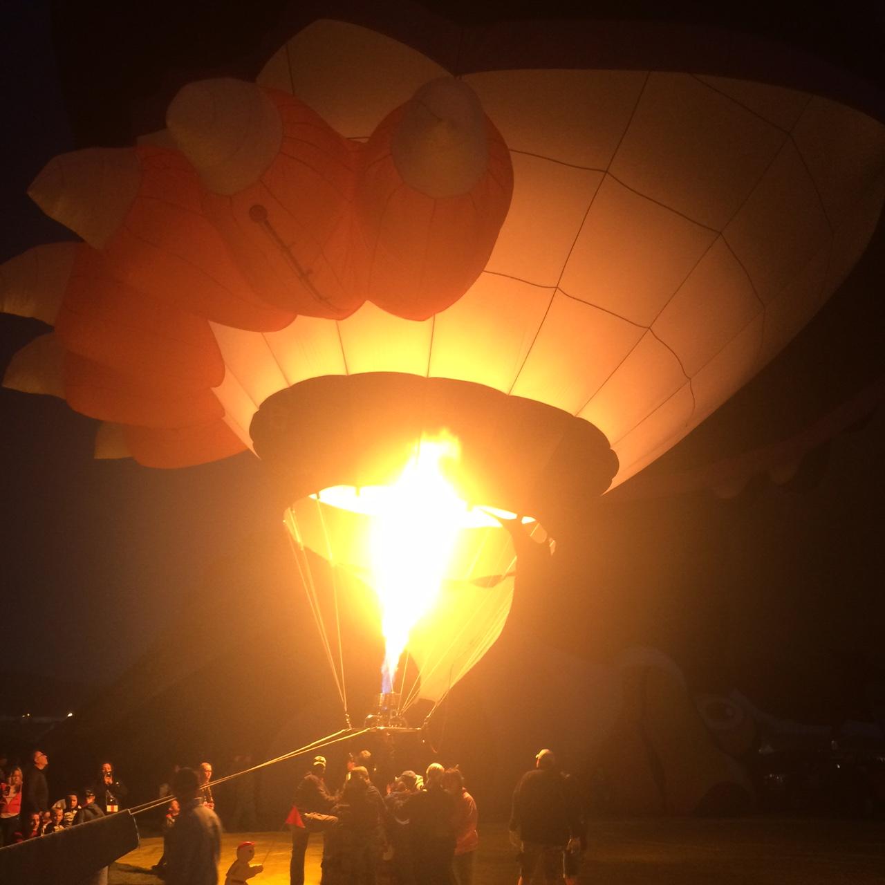 Balloon Fiesta_452656
