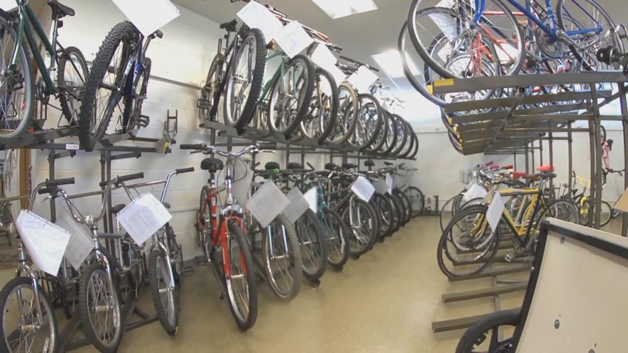 esperanza-bike_486492