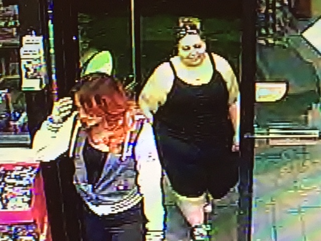 credit card theft suspects_487276