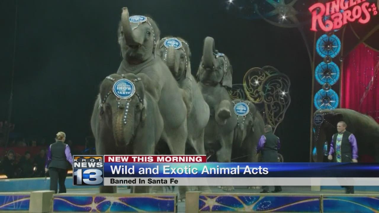 santa fe wild animals_678567