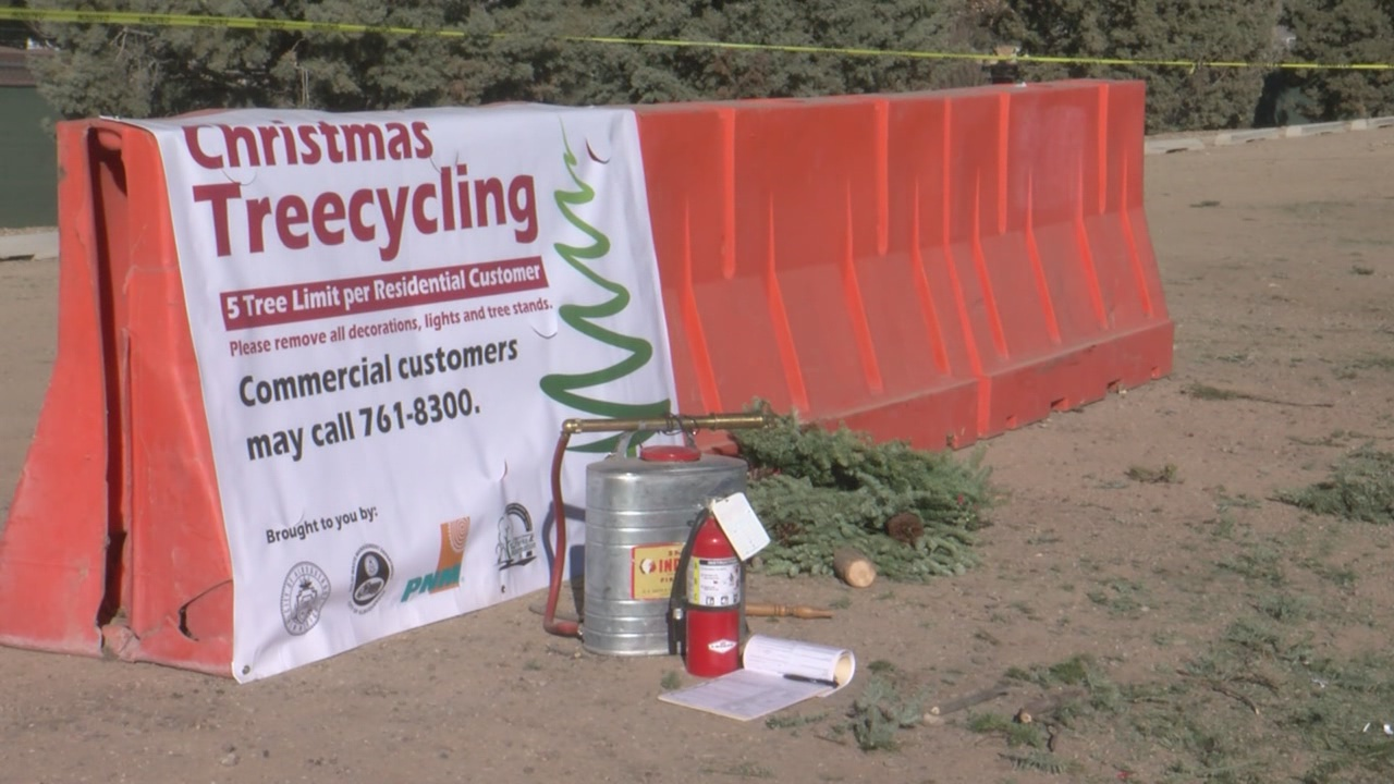 christams tree recycling_760018