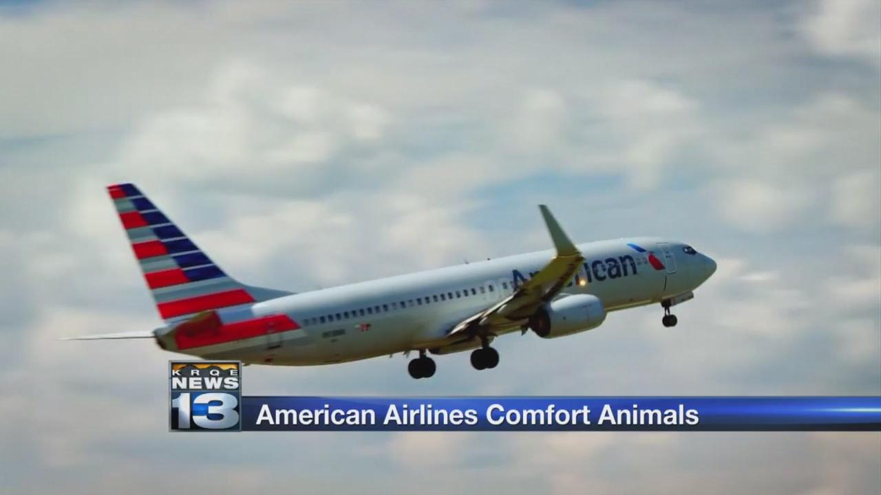 American Airlines_1526409581772.jpg.jpg
