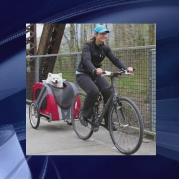 Bike to Work Day could mean a slimmer waistline, a fatter wallet, and free coffee!