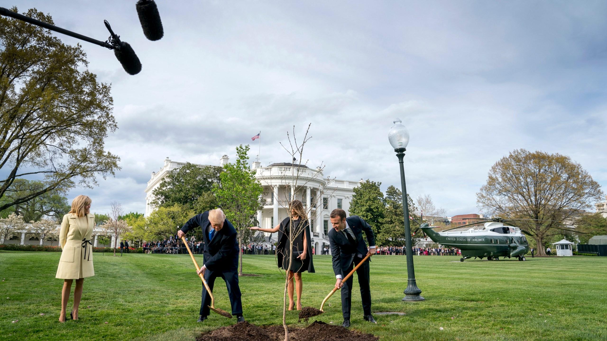 Trump_Macron_Tree_56174-159532.jpg12565073