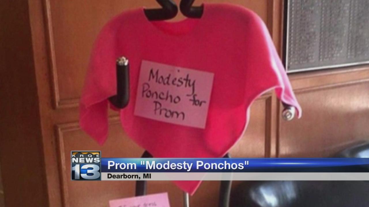 modesty poncho_1525214926419.jpg.jpg