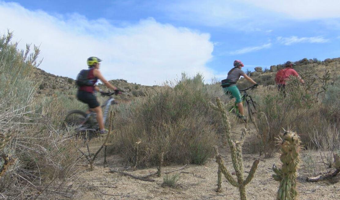mountain biking_1525648864191.JPG.jpg