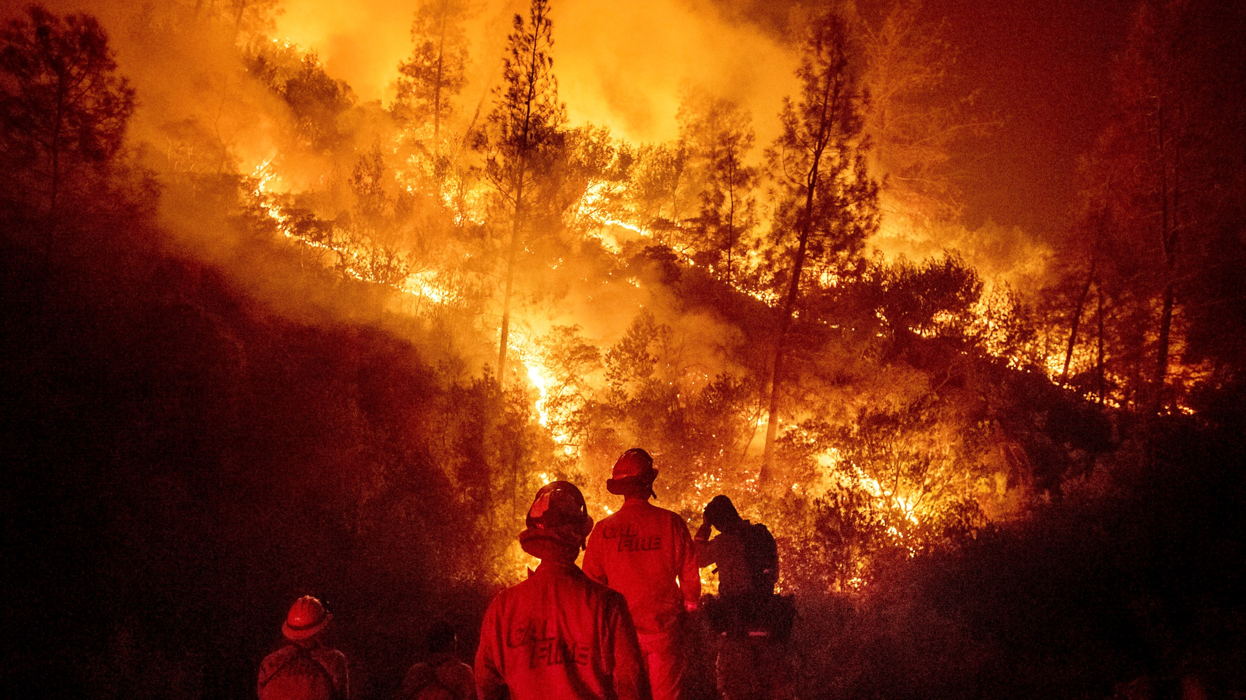 Science Says Wildfire Fuel_1534705148638