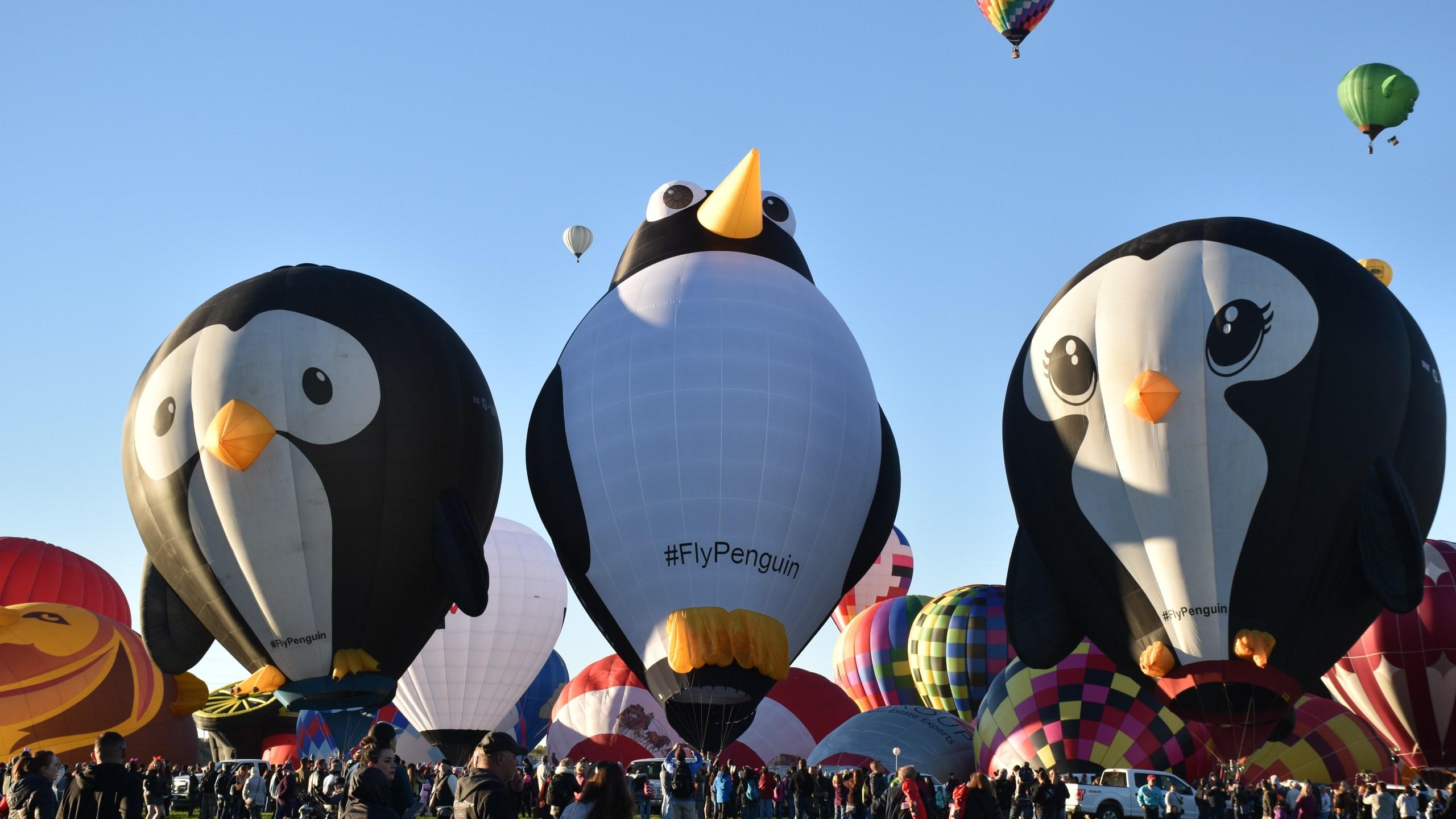 Balloon Fiesta 17_1535750262315.JPG.jpg