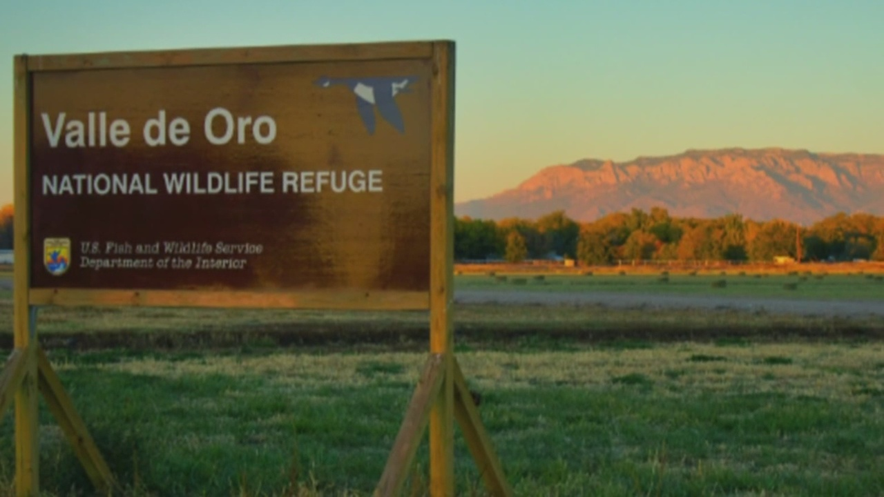 Build Your Refuge Day in the Valle de Oro National Wildlife Refuge