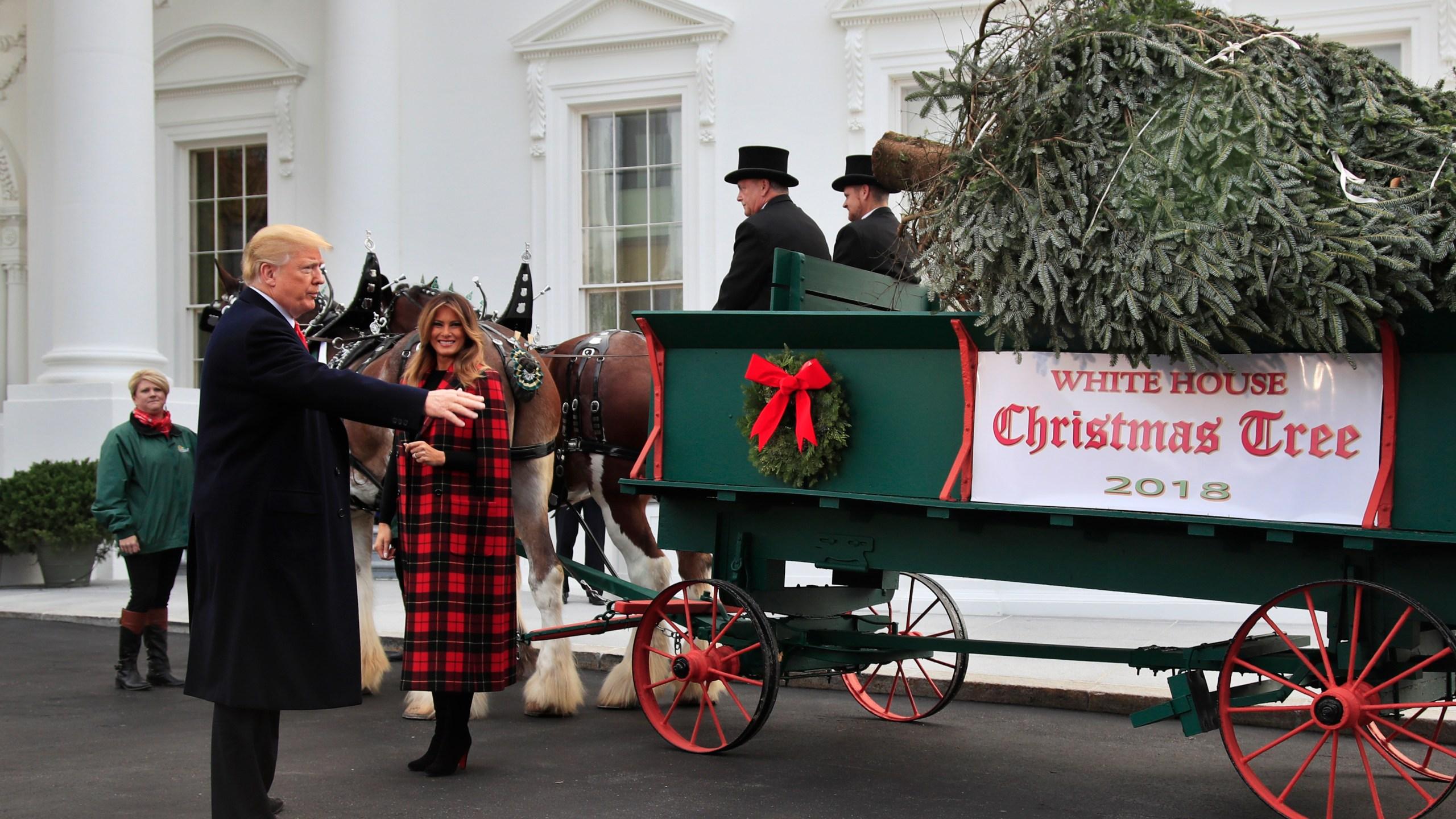 Trump White House Tree_1542659279303