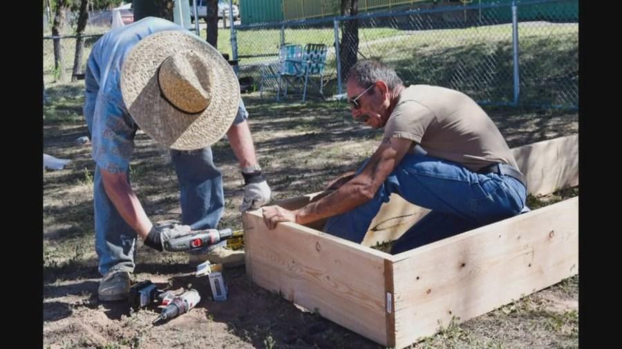NMSU program teaches gardening skills to seniors_1543965309274.jpg.jpg