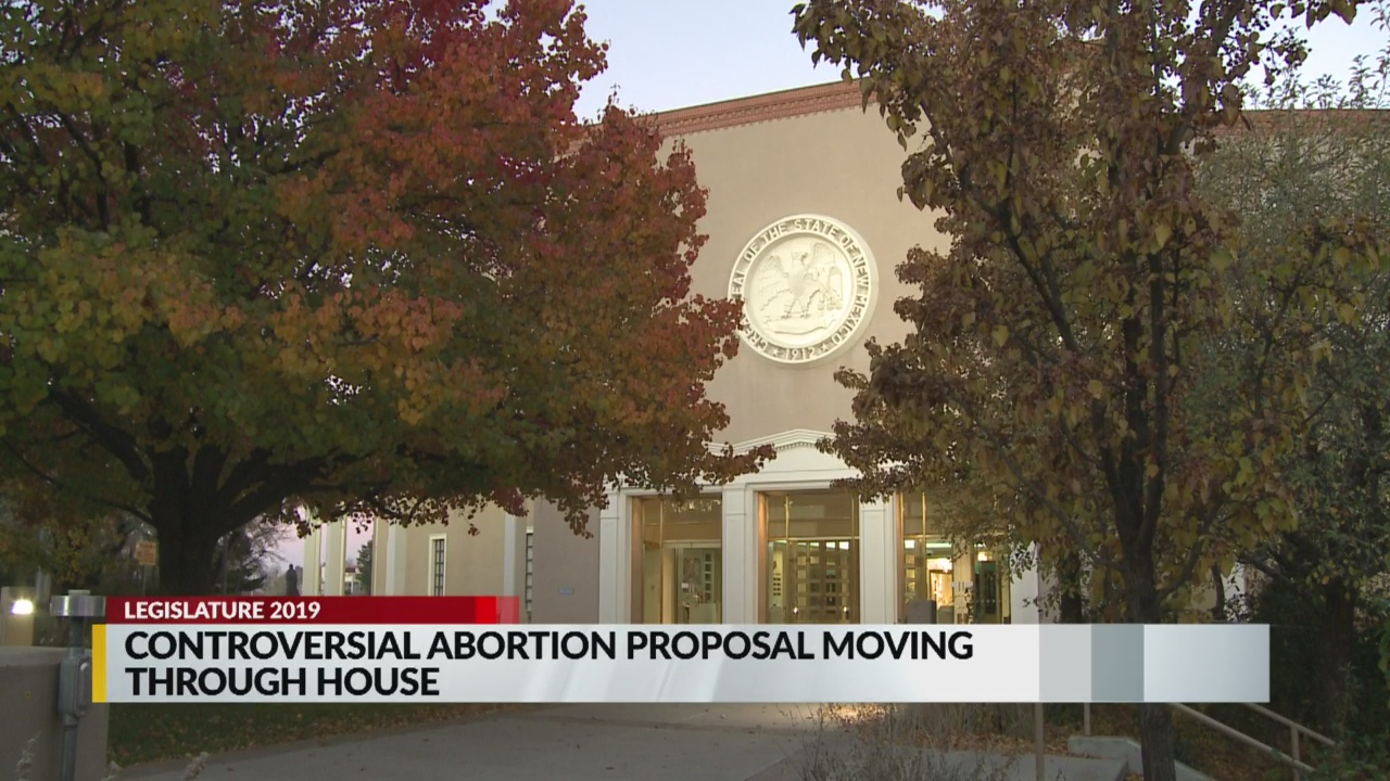 ABORTIONPROPOSAL_1548622890216.jpg