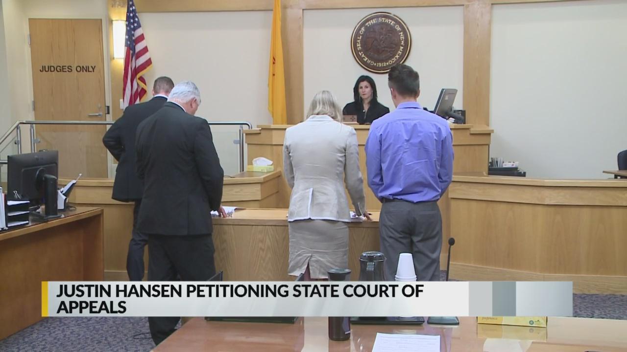 Justin Hansen still fighting sentence in shovel beating case_1546492332540.jpg.jpg