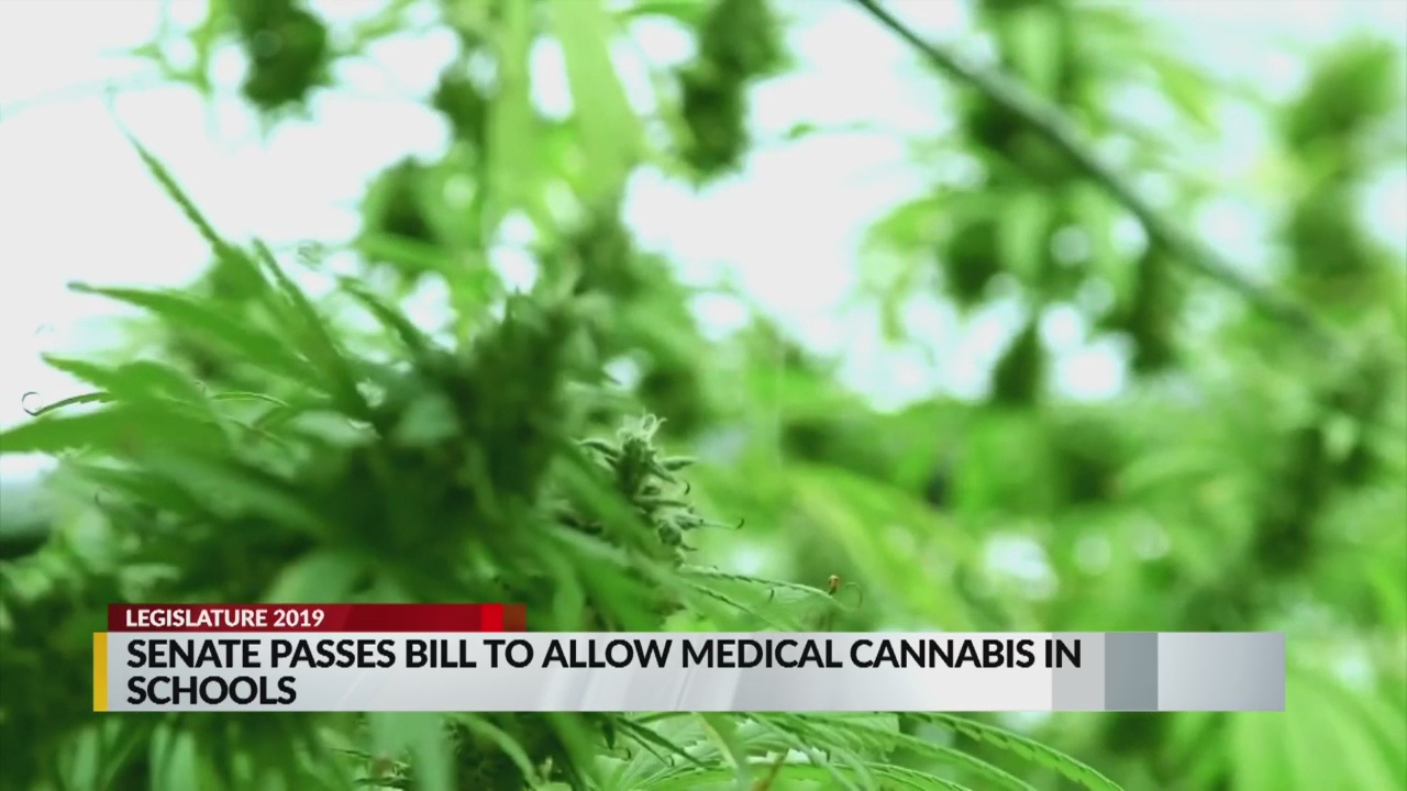Bill to allow medical marijuana in schools passes New Mexico Senate_1550553172930.jpg.jpg