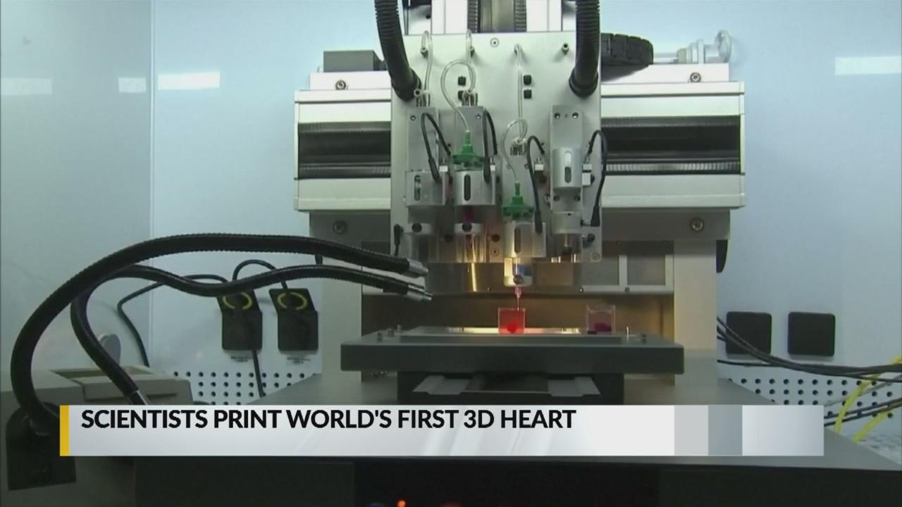 3D printed heart_1555420179131.jpg.jpg