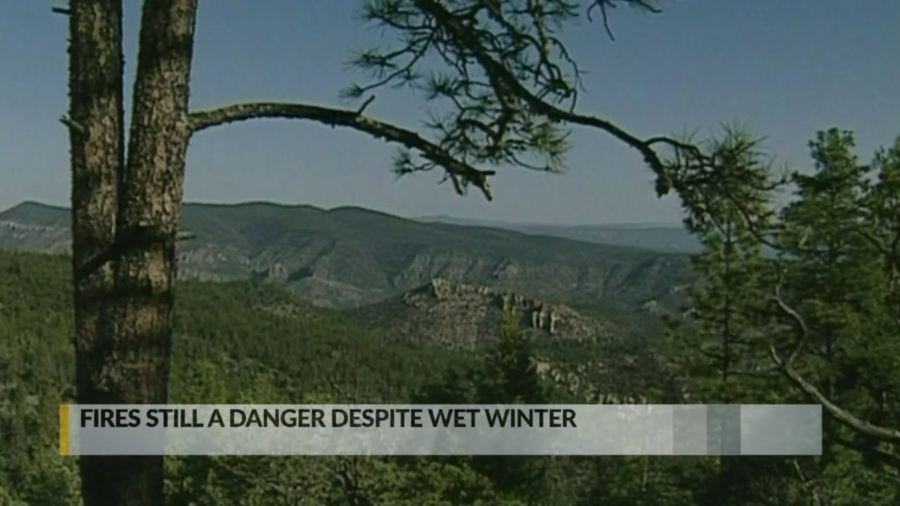 Officials warn of wildfire threat despite wet winter_1556578169580.jpg.jpg