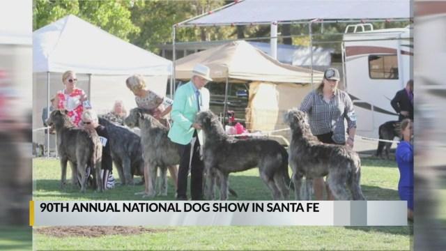 Irish Wolfhounds to converge on Santa Fe