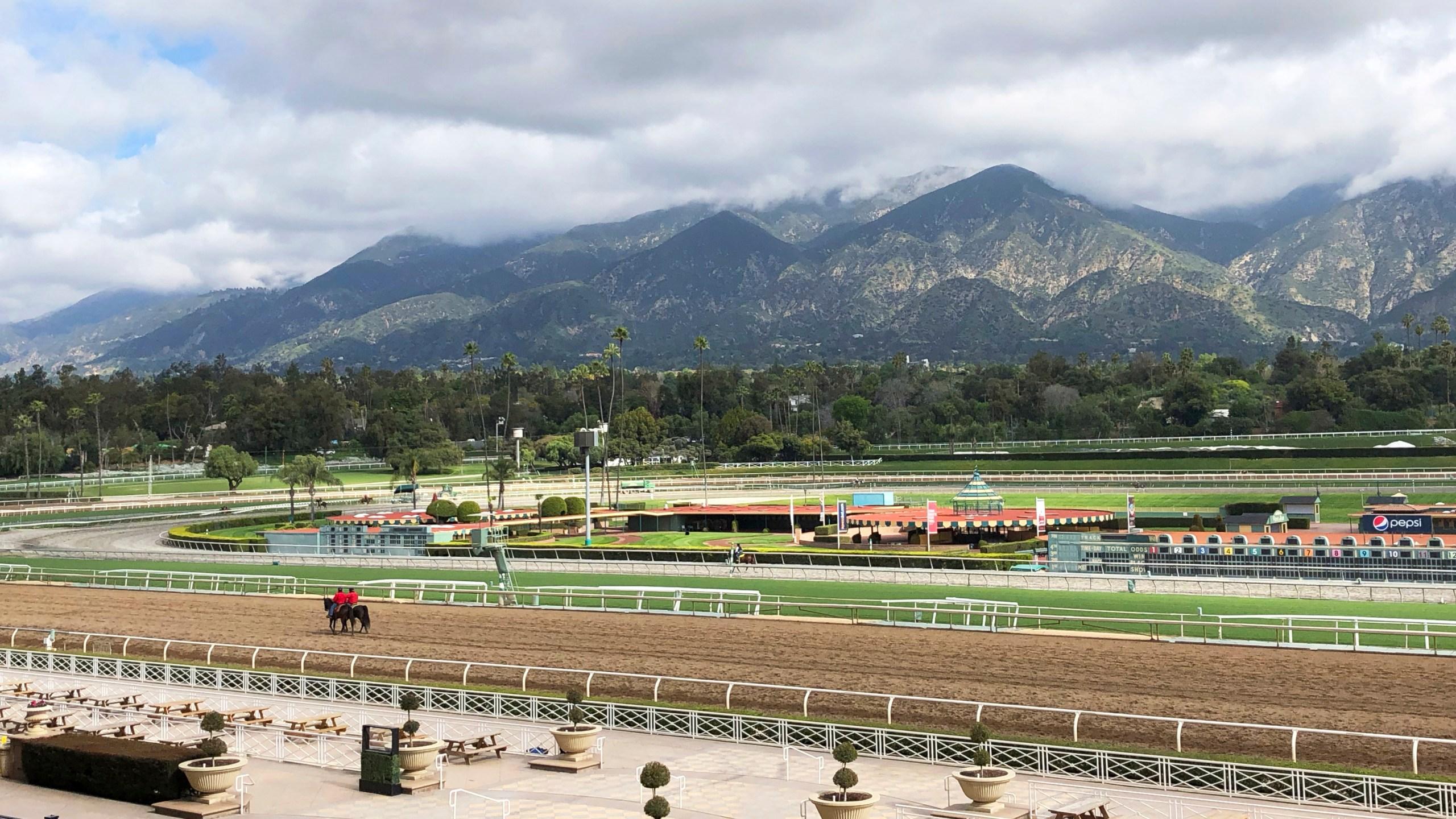 Santa_Anita_Fatalities_Horse_racing_59721-159532.jpg51943422