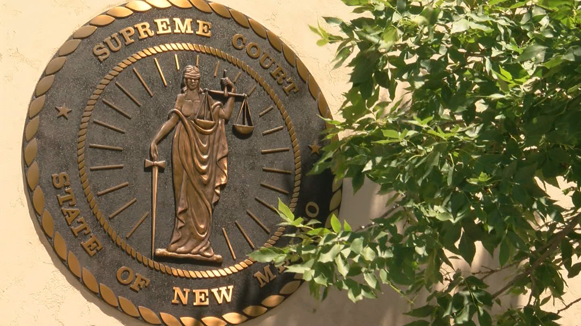 NM Supreme Court asked to review constitutionality of