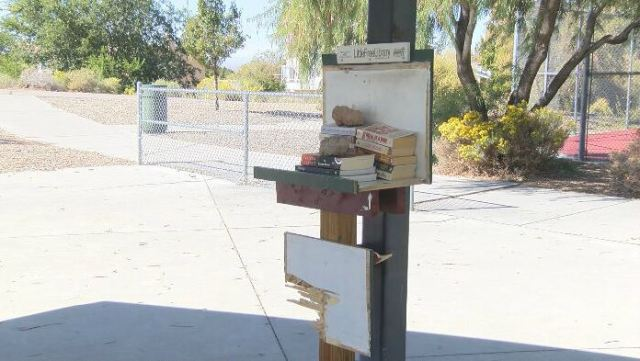 Little Free Library destroyed at northeast Albuquerque park