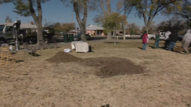 Parks and Recreation partners with local Sikh community to plant 550 trees