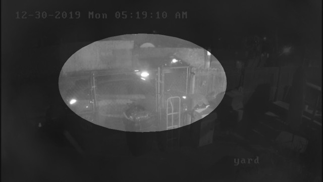 Surveillance video shows drive-by shooting at trailer park
