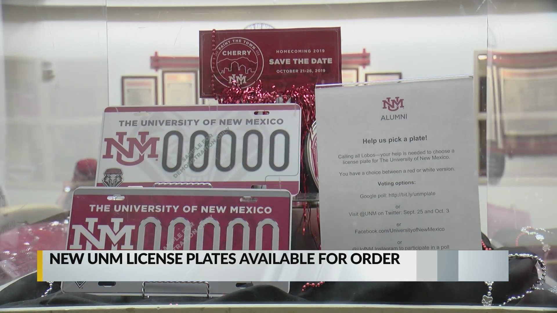 New University of New Mexico license plates available for order