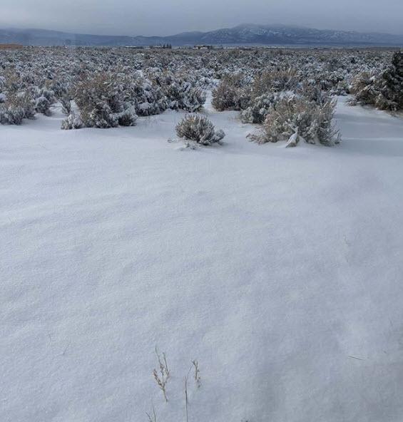 Videos/Photos: Snowfall Across New Mexico