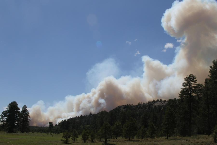 Smoke from the Wood Springs 2 Fire. Photo Courtesy of InciWeb. July 2, 2020.
