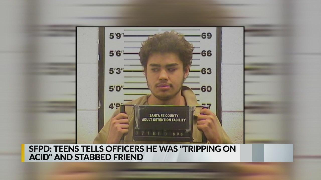 Teen stabs friend, blames acid trip