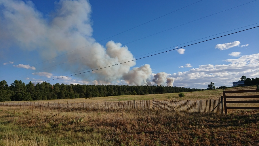 Photo Courtesy of Devon. July 8, 2020. Fire burning in Manzano Mountains.