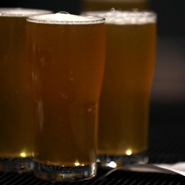UNM Craft Beer Tasting Class